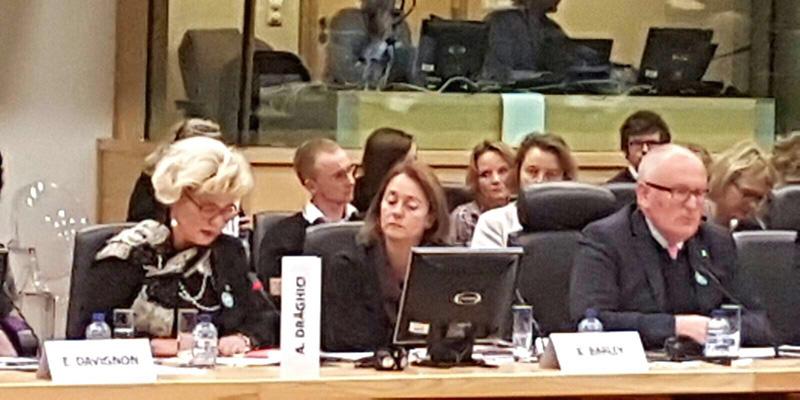 """Participarea secretarului de stat al ANES la reuniunea anuală """"Colloquium on Fundamental Rights in Brussels"""", 20 - 21 noiembrie 2017"""